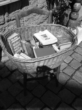 Как-то, после проливных дождей, этот врач поручил слуге вынести все книги во двор для просушки...Anna Zerйnyi/pixelio