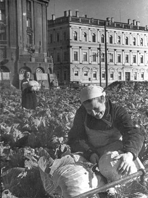 Огород в блокадном Ленинграде. Фото: Великая Эпоха