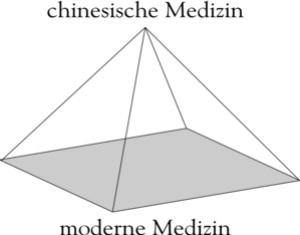 Китайская медицина базируется на Дао — основном законе природы. Поэтому она остаётся неизменной на верхушке пирамиды и по сей день. Фото: Джон Чжоу