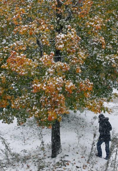 Первый снег в Баварии. Фото: Getty Images