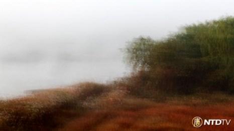 Цвета осении. Фото: CHENGKUNKAI/NTDTV