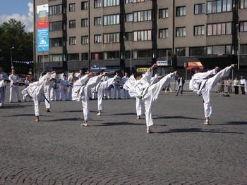 Таеквон-до ITF. Фото с tkdspb.ru