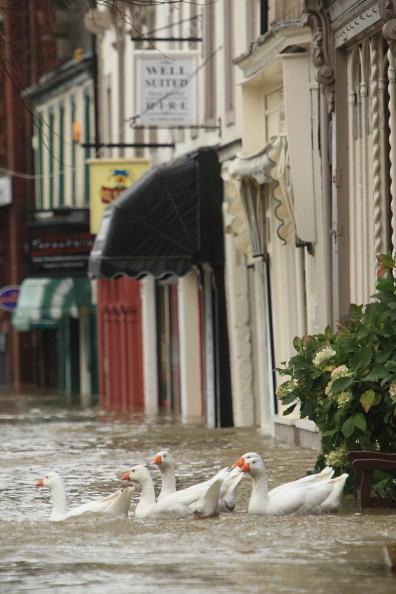 Наводнение на северо-западе Англии. Фото: Christopher Furlong/Getty Images