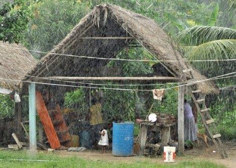 Сурама. Гайана. Тропический ливень. Фото: Елизавета Кирина/tecnolux.ya.ru