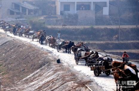 Пострадавшие от засухи районы юго-запада Китая. март 2010 года. Фото с epochtimes.com