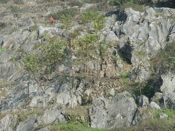 Всё больше территории Китая превращается в каменистую пустыню. Фото с epochtimes.com