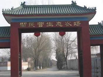 Один из 500 районов, названных ООН экологически чистыми – «Китайская экологическая деревня номер один». Фото с epochtimes.com
