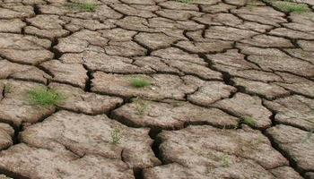 На юге Китая самая сильная засуха за 50 лет. Фото с epochtimes.com