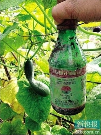Бутылка с запрещённым сильно токсичным химикатом, которые широко используют китайские фермеры. Фото: Xin Kuai Bao
