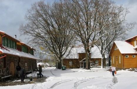 Кроличье королевство. Жилищные и хозяйственные постройки в Ледмане. Фото предоставлено: trusukaraliste.lv
