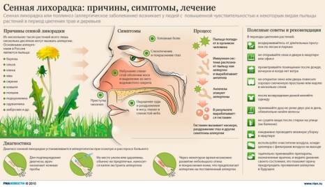 Сенная лихорадка: причины, симптомы, лечение