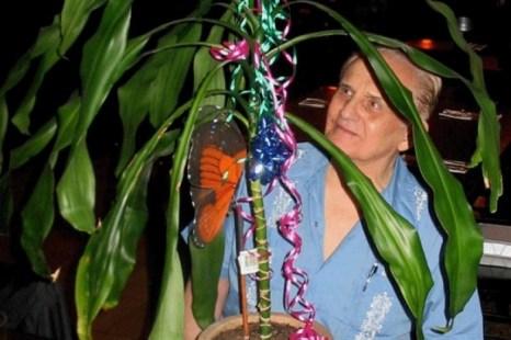Клив Бакстер начал свои эксперименты с растением Драцена. Фото предоставлено Cleve Backster (Кливом Бакстером)
