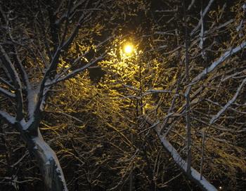Зимний вечер. Фото: Николай Богатырёв