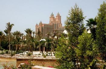 Жемчуг смогут добывать туристы в Дубае. Фото: Getty Images