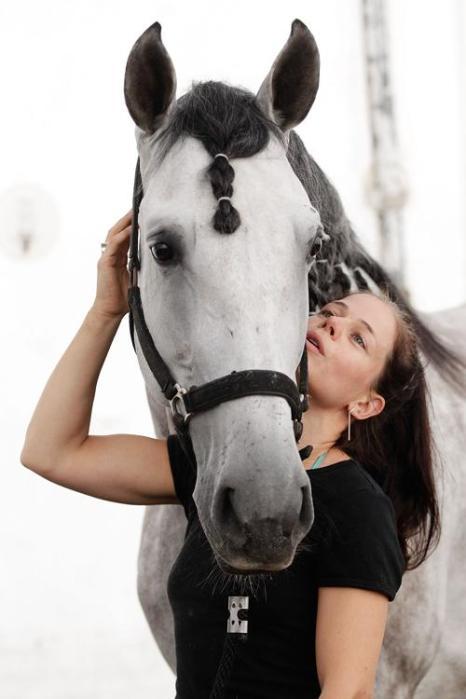Лошади прибыли на премьеру шоу Cavalia в Сидней. Фото: Brendon Thorne/Getty Images