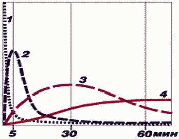 Зависимость использования источников энергии от времени. По оси абсцисс (Х) - время тренировки в минутах, по оси ординат (У) - вклад того или иного источника в «общее дело». Фото: предоставлено автором.