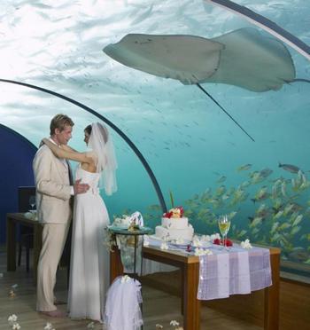 Подводный отель на Мальдивах – чудо современной архитектуры. Фото с сайта http://maldivskieostrova.ru/content/podvodnyi-otel-na-maldivakh