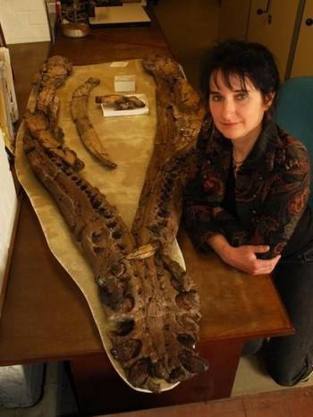 Доктор Джудит Сэйсон рядом с нижней челюстью плезиозавра.