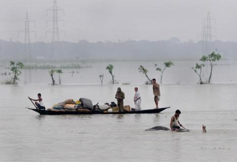 Наводнение в Индии.  Фото:   STRDEL/AFP/GettyImages