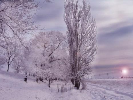 Зимние сюжеты. Фото: Ирина Рудская/Великая Эпоха (The Epoch Times)