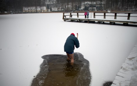 Моржи  в  Lanke. Фоторепортаж. Фото: JOHANNES EISELE/AFP/Getty Images