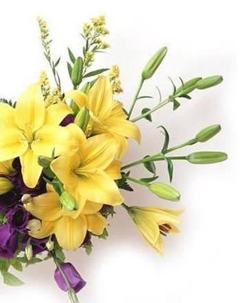 Фото: flowerprice.ru