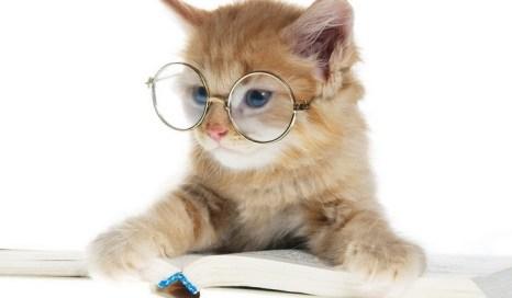 Интеллектуальный труд всегда в цене. Фото с nastol.com.ua