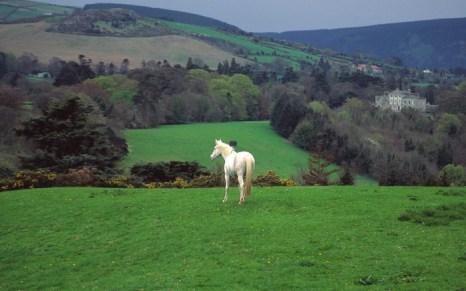 Ирландская виза - легко. Фото с thewallpapers.org