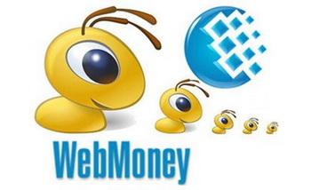Электронные деньги и кошельки. Преимущества и особенности их использования. Фото с i053.radikal.ru