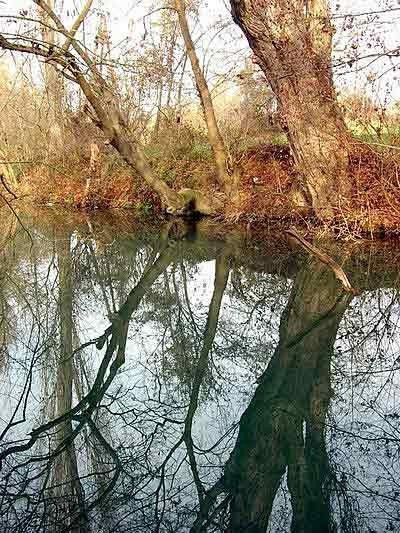 Черная речка. Фото:Алла Лавриненко/Великая Эпоха