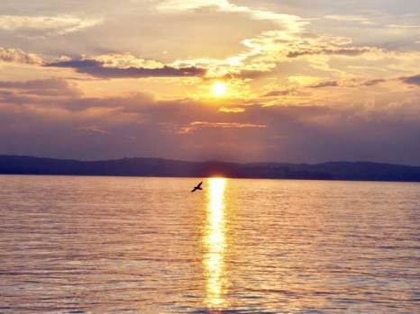 Золотисто-янтарные закаты августа. Фото:Николай Богатырев