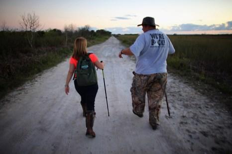 Во Флориде начался отлов питонов. Фото: Joe Raedle/Getty Images