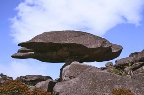 Необычный камень на Рорайме. Фото с сайта: lookandtravel.ru