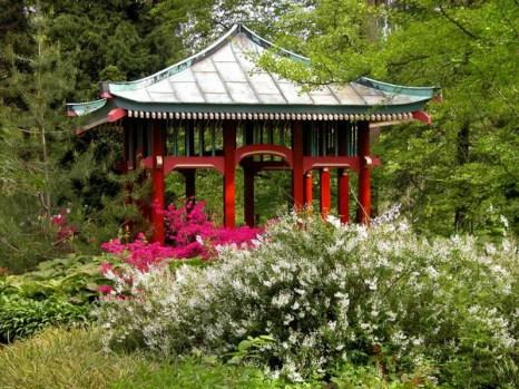 Японский павильон:  пустые пространства и экзотическое ощущение повсюду. Фото: © I. Haas, Botanischer Garten und Botanisches Museum Berlin-Dahlem