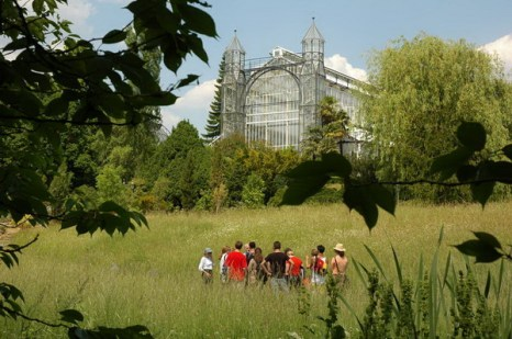 Экскурсия в Ботаническом саду, вдали видна оранжерея средиземноморья. Фото: © I. Haas, Botanischer Garten und Botanisches Museum Berlin-Dahlem