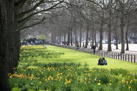 Весенняя погода прибыла в Великобританию. Фото: Oli Scarff/Getty Images