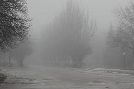 Прогулка в тумане. Фото: Илья Иванов/Великая Эпоха (The Epoch Times)