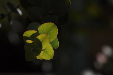 Между Небом и Землёй. Фото: Хава Тор/Великая Эпоха (The Epoch Times)
