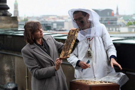 Фото: Министр сельского хозяйства Германии Ильзе Айгнер посетила пчелиные семьи на крыше Берлинского кафедрального собора 22 мая 2013 г. Фото: Sean Gallup/Getty Images