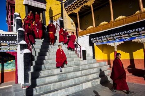 Монахи после утренней пуджи в монастыре Тикси. Ладак. Фото: Daniel Berehulak/Getty Images