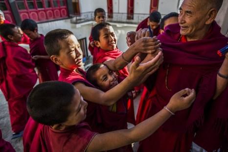 Монахи в монастыре Тикси. Ладак. Фото: Daniel Berehulak/Getty Images