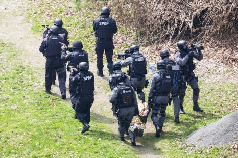 Совместные антитеррористические учения провели полицейские спецназы Германии (SEK) и Польши (SPAP) 25 апреля 2013 г. в польском районе Лесна. Фото: Joern Haufe/Getty Images