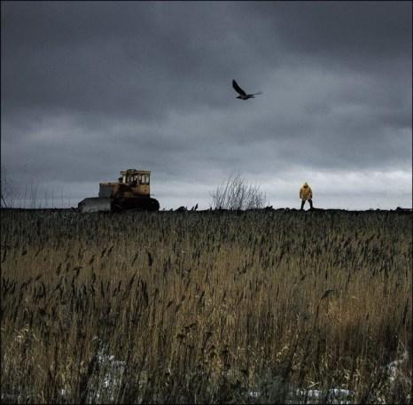 Поле на троих. Фото: Игорь Громов-Дранкин