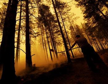 Светлана Дардыкина получила в своё распоряжение 15 тонн груза, предназначенного для помощи жителям сгоревшей деревни Свеженькая. Фото: NATALIA KOLESNIKOVA/AFP/Getty Images