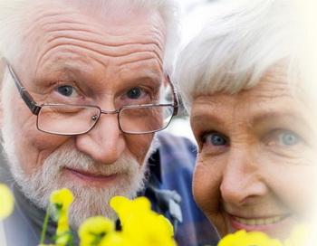 В Иваново появились приёмные бабушки и дедушки. Фото:  liveinternet.ru