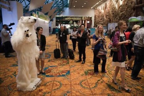 Россия выдвинула на конференции СИТЕС белого медведя. Фото: NICOLAS ASFOURI/AFP/Getty Images