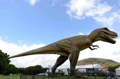 В только что вышедшей в США книге Браяна Свитека выдвинута новая теория гибели динозавров. Бабочки могли стать причиной исчезновения динозавров. Фото: Bradley Kanaris/Getty Images