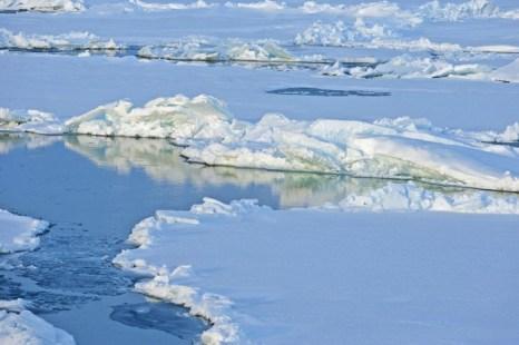Лёд дрейфует в Северном Ледовитом океане. Среди скептиков и учёных идут жаркие споры о том, тает или нарастает лёд. Фото предоставлено NOAA News