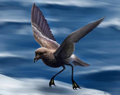 Птицы определяют родственников по запаху. Фото с сайта demiart.ru