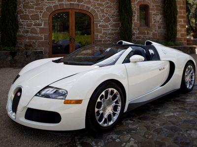 Bugatti Veyron Super Sport - 1 место - 431 км/ч (официально зарегистрированный представителями Книги рекордов Гиннеса мировой рекорд скорости среди серийных автомобилей). Мощность двигателя: 1200 л.с., 1500 Нм. Цена - $2 700 000.